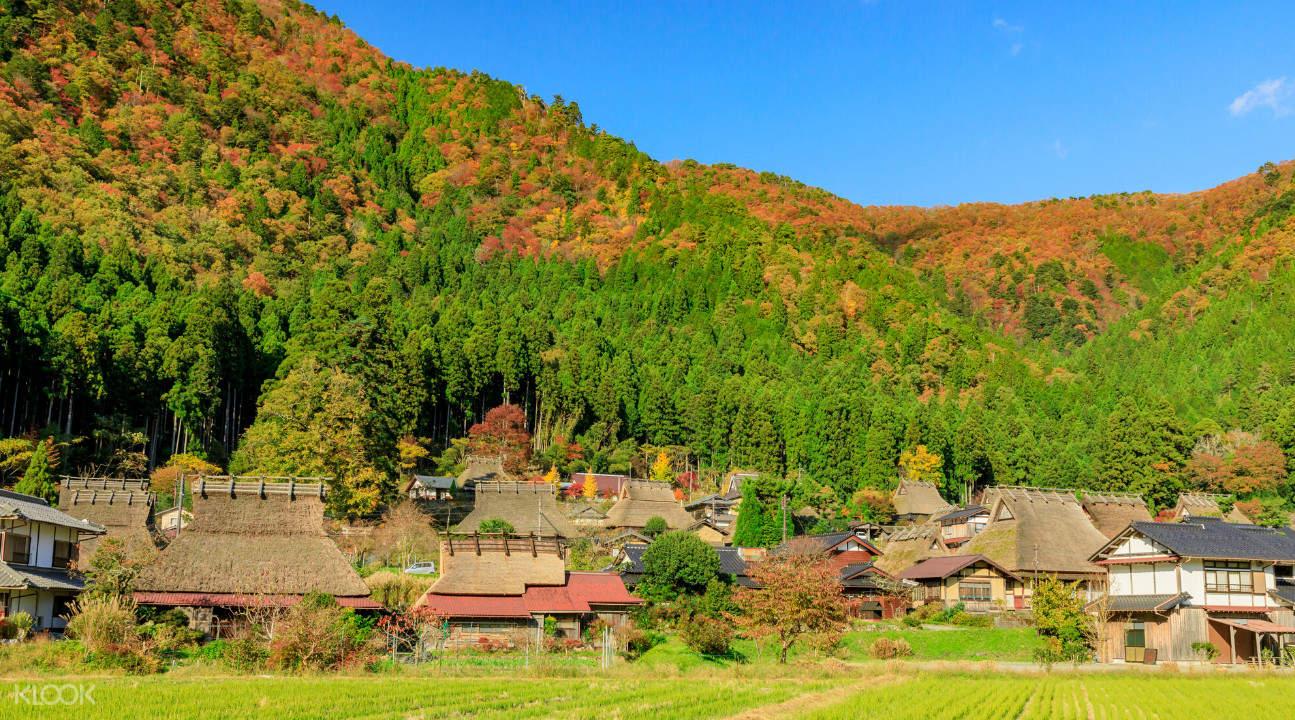 Autumn Miyama